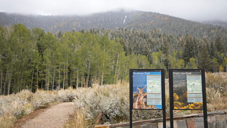 great basin national park hiking trails