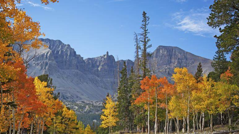 great basin national park in autumn