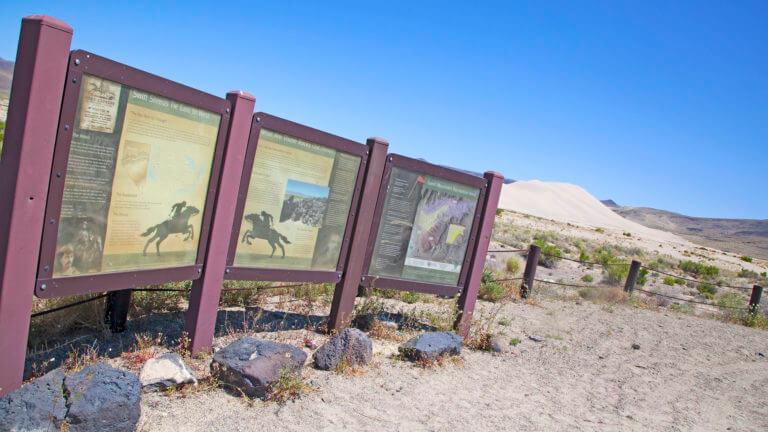 sand springs desert study area