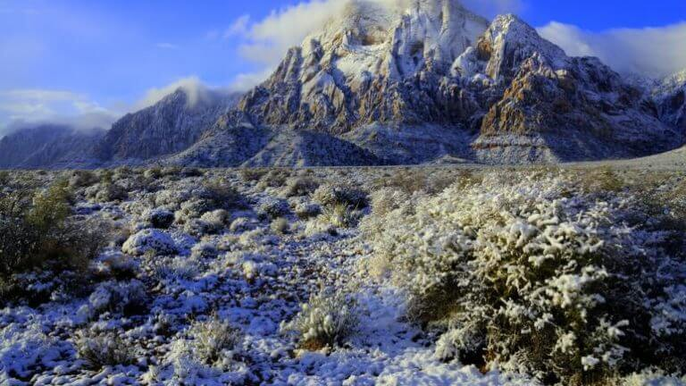 red rock canyon covered in snow