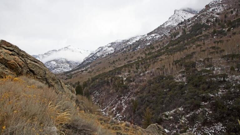 winter in lamoille canyon