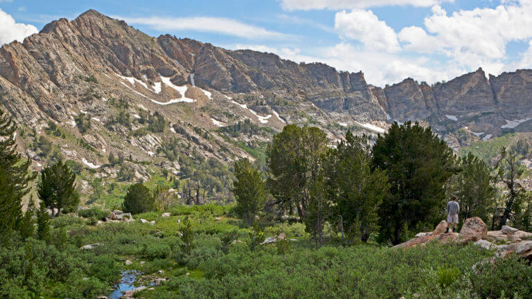 snowmelt in lamoille canyon & ruby mountains