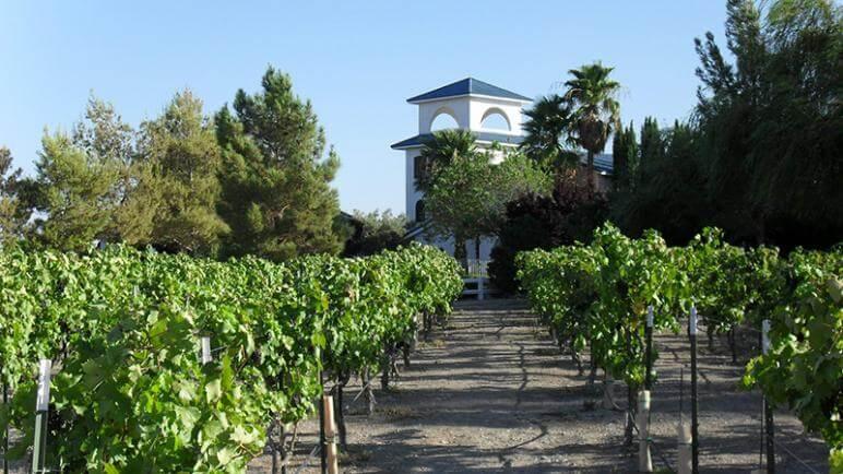 pahrump vineyards