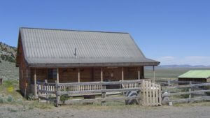 Old Yella Dog Ranch and Cattle Company