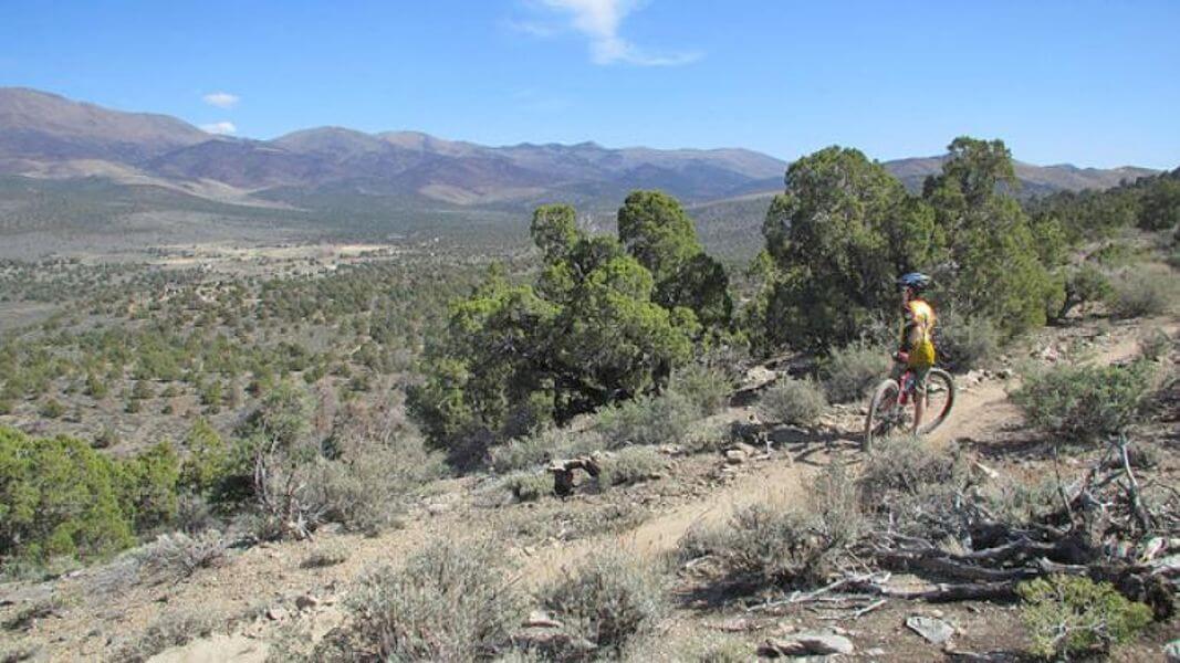 Pedaling The Pinyon Trail