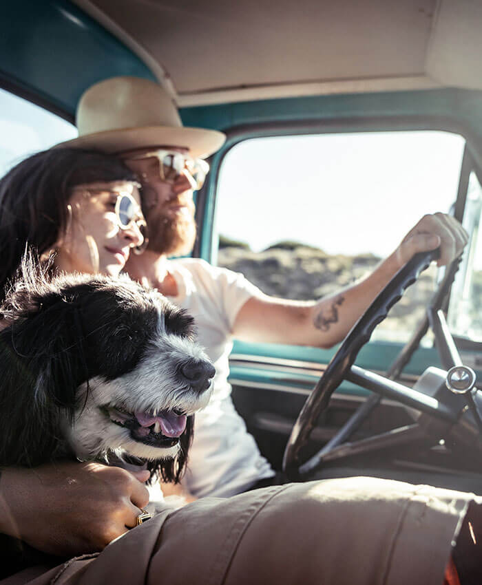 Man and woman driving with their dog