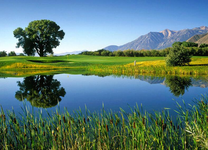 golf, Nevada golf, golf in Nevada, Carson Valley Golf