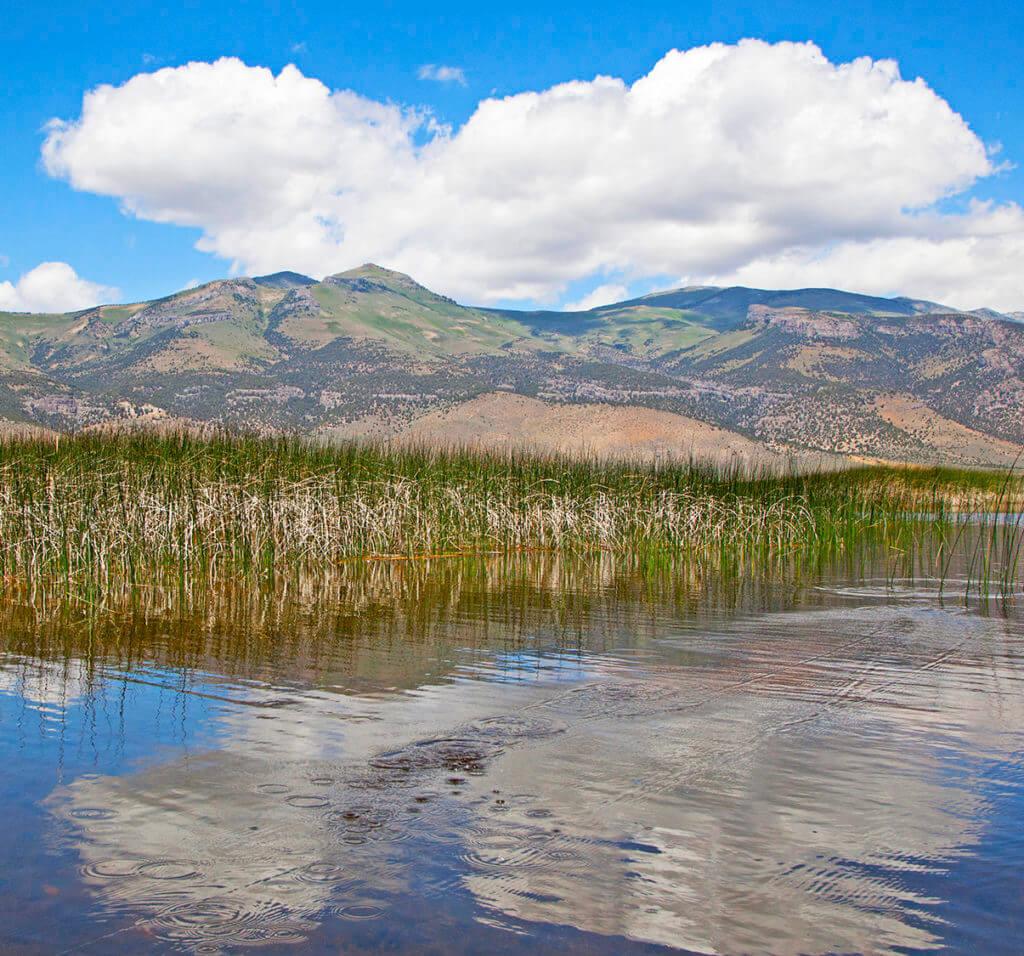 Ruby Lake, Ruby Lake National Wildlife Refuge, Ruby Marsh, Bass Fishing, Fishing, Wildlife Refuge, Nevada Wildlife